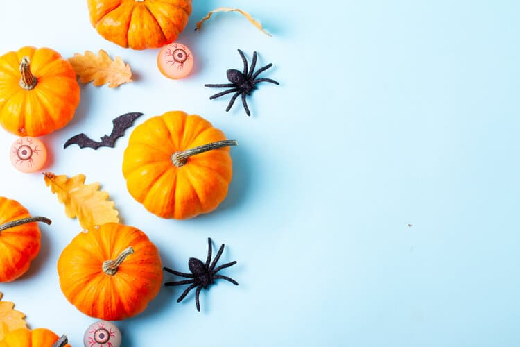 A flat lay of mini pumpkins, toy spiders, and toy eyeballs.